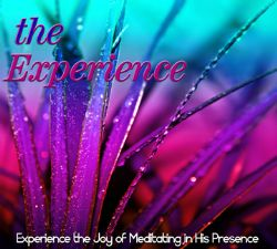 The Experience (Prophetic Soaking CD) by David Baroni