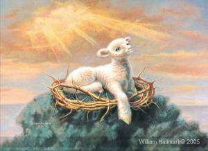 Behold the Lamb, (Prophetic Print- Size 8 x 11 ) William Hallmark